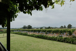 Magnificent view of farm estate and surrounding areas