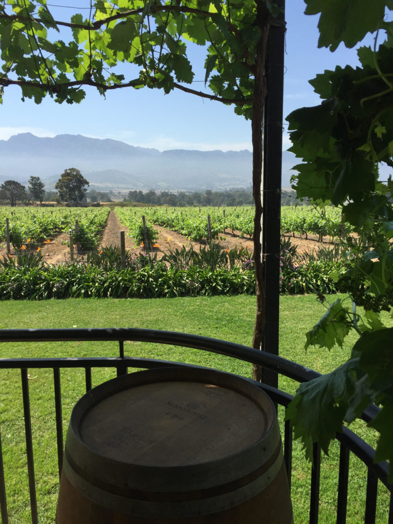 Cape Winelands Experience